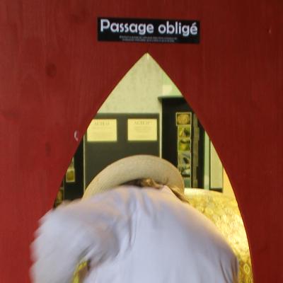 Claudius de Cap Blanc, artiste singulier, Musée de l'Affabuloscope, Mas d'Azil , Ariège. Artiste engagé, son oeuvre puissante et profonde